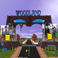 Teleport To Woodland